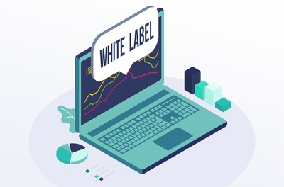How to launch a White Label broker?