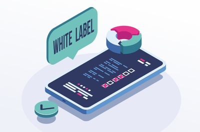White Label for brokers from scratch: what to consider